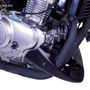 Hasidom, Puig Honda CBF500 2004-2007 kép